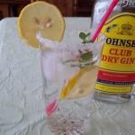 Lemon Gin Fizz strong 2