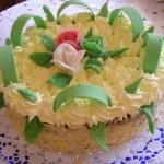 Diplomata torta 1