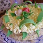 Diplomata torta 2