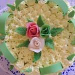 Diplomata torta 3