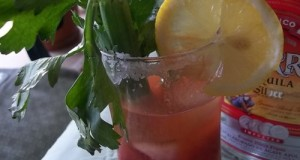 Mexican Tequila Bloody Mary