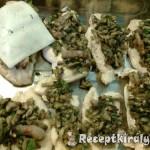 Sajtos gombás csirkemell szeletek 1