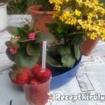 Epres joghurt eperlikőrrel 1