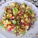 Balzsamecetes vegyes saláta 2