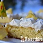 Ananászos kókuszos torta - paleo 1