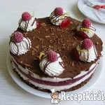 Málnás Túró Rudi torta 1