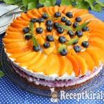 Gyümölcsös túrótorta (Barackkal és áfonyával) 1