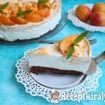 Kajszibarackos túrókrém torta 2